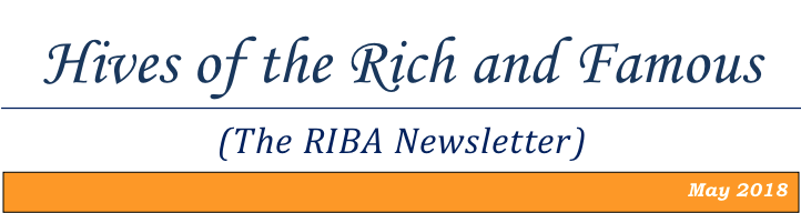 May RIBA Newsletter